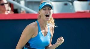 'Búp bê Nga' Maria Sharapova được đặc cách dự Rogers Cup 2017