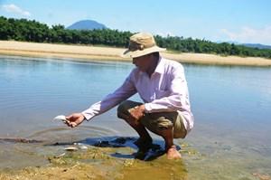 Cá lại chết ở khe Đá Mài, dân không dám lấy nước canh tác