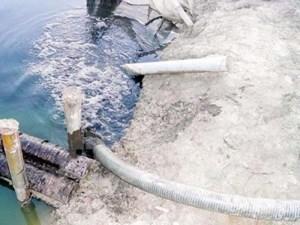 Các dòng sông ở Hải Phòng có dấu hiệu ô nhiễm