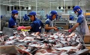 Cần Thơ: Gạo và thuỷ sản vẫn là mặt hàng xuất khẩu chủ yếu