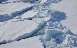Cảnh báo băng Bắc cực đang tan nhanh