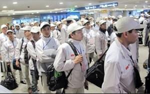 Cảnh giác với trò lừa làm thực tập sinh tại Nhật