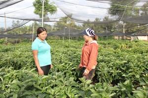 Chi hội phụ nữ 5 không, 3 sạch, xây dựng nông thôn mới tại xã Krông Na