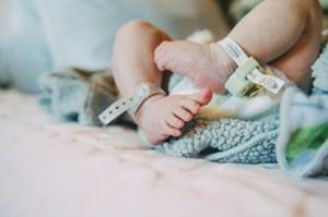 Chi tiết quá trình 'đón' em bé đầu tiên chào đời từ tử cung của người hiến đã mất