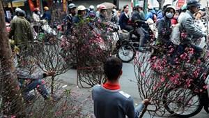 Chợ hoa Quảng Bá được bình chọn là điểm đến hấp dẫn đón năm mới