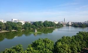 Chủ tịch Hà Nội bác bỏ thông tin thay thế cây xanh ở hồ Gươm