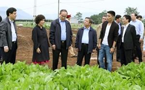 Chủ tịch Nguyễn Thiện Nhân khảo sát các mô hình sản xuất nông nghiệp tại Nghệ An