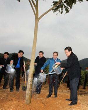 Chủ tịch nước dự Lễ phát động Tết trồng cây