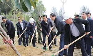 Chủ tịch nước phát động 'Tết trồng cây đời đời nhớ ơn Bác Hồ'