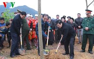 Chủ tịch nước Trương Tấn Sang phát động Tết trồng cây