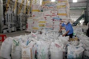 Chú trọng thị trường gạo nội địa