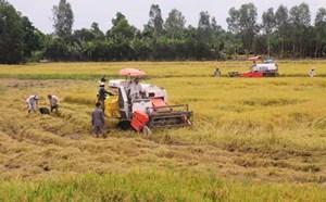 'Cơ giới hóa nông nghiệp và Đầu tư phát triển kỹ thuật thông minh' cho vùng ĐBSCL