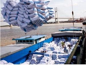 Cơ hội xuất khẩu gạo sang Bangladesh