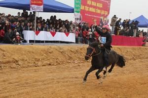 Con ngựa trong đời sống của người vùng cao