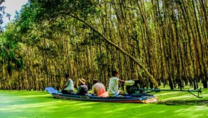 Công ty du lịch Sông Hậu khởi động chương trình 'ăn khế trả vàng'