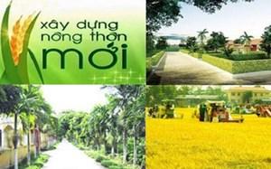Cuộc thi báo chí viết về Nông thôn mới gắn với cơ cấu lại ngành nông nghiệp