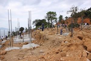 Đà Nẵng đã có báo cáo gửi Thủ tướng về rừng Sơn Trà bị phá