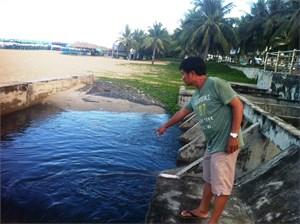 Đà Nẵng: Quyết tâm dẹp nạn xả thải ra môi trường
