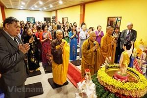 Đại lễ Phật đản là biểu tượng đoàn kết của người Việt tại Séc