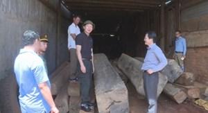 Đắk Lắk: Phát hiện hơn 170 m3 gỗ không rõ nguồn gốc tại xưởng cưa