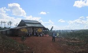 Đắk Nông: Nhập nhèm đất công-đất tư