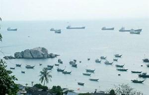 'Đi bộ dưới đáy biển' Cù Lao Chàm