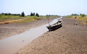 Đồng bằng sông  Cửu Long đang biến dạng
