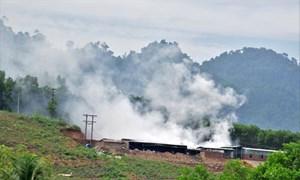 Đóng cửa nhà máy sấy cau gây ô nhiễm tại Quảng Nam
