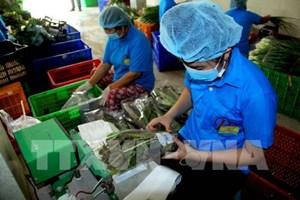 Đồng Nai hướng tới xây dựng HTX ứng dụng KHCN trong sản xuất
