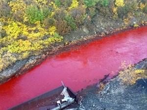 Dòng sông chuyển màu