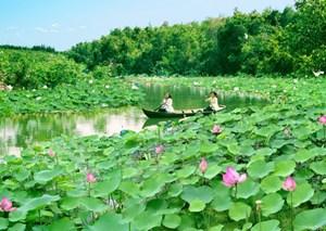 Khu bảo tồn sinh thái Đồng Tháp Mười