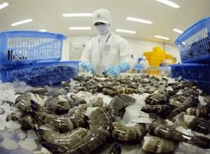 Dự báo xuất khẩu tôm sang Anh giảm nhẹ