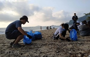 Du khách Canada khởi xướng 'thử thách dọn rác' tại bãi biển Quy Hòa