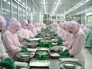 EU - thị trường xuất khẩu lớn của Việt Nam