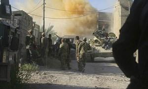Fallujah thoát khỏi tay IS