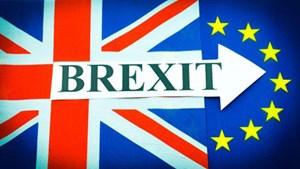 Giới chức Anh tranh cãi nảy lửa về đi hay ở lại EU