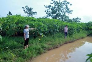Hà Nội: Điều tra vụ cháu bé 10 tuổi tử vong ở rãnh nước