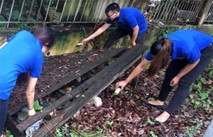 Hà Nội: Đoàn viên thanh niên 6 quận ra quân phòng chống sốt xuất huyết