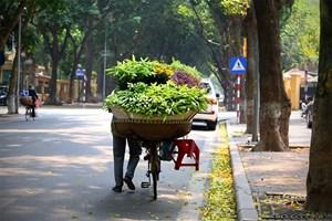 Hà Nội hửng nắng, Nam Bộ có mưa rào và dông rải rác