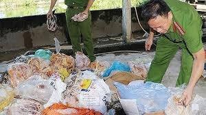 Hành động ngay để ngăn chặn thực phẩm bẩn