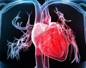 Hệ thống giám sát và cảnh báo các vấn đề tim mạch