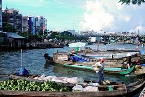 Hộ nghèo ở Cà Mau tăng gần gấp 3 lần theo chuẩn mới