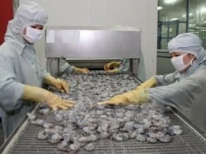 Hơn 30 đơn vị được xuất khẩu tôm sang Trung Quốc