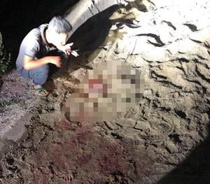 Hưng Yên: Cháu bé 7 tuổi bị cả đàn chó tấn công đã không qua khỏi