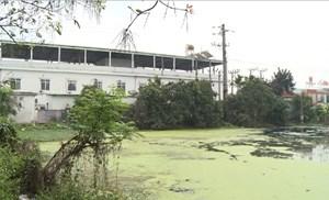 Hưng Yên: Nhiều doanh nghiệp xả thải gây ô nhiễm môi trường