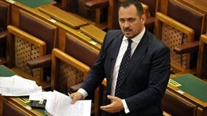 Hungary truy tố nghị sỹ thuộc đảng cầm quyền vì tội tham nhũng