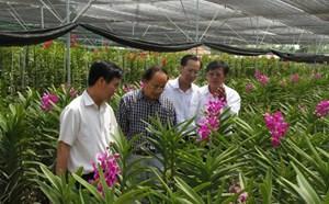 Hướng đi mới  cho nông sản Việt