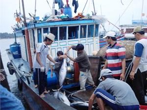 Huy động trên 88 tỷ đồng hỗ trợ ngư dân