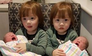 Hy hữu một gia đình có 2 cặp sinh đôi