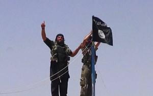 IS bắn rơi chiến đấu cơ quân đội Syria